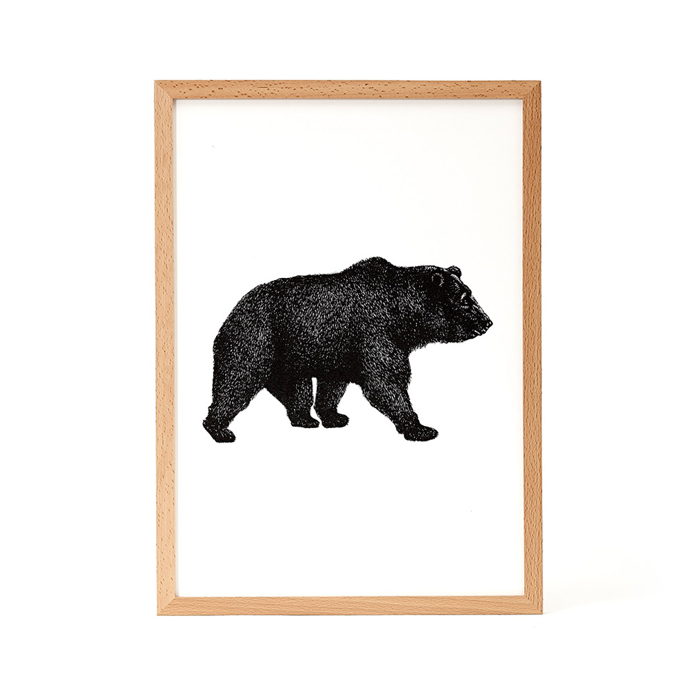 Nice to Have - Kodiak Bear Illustration