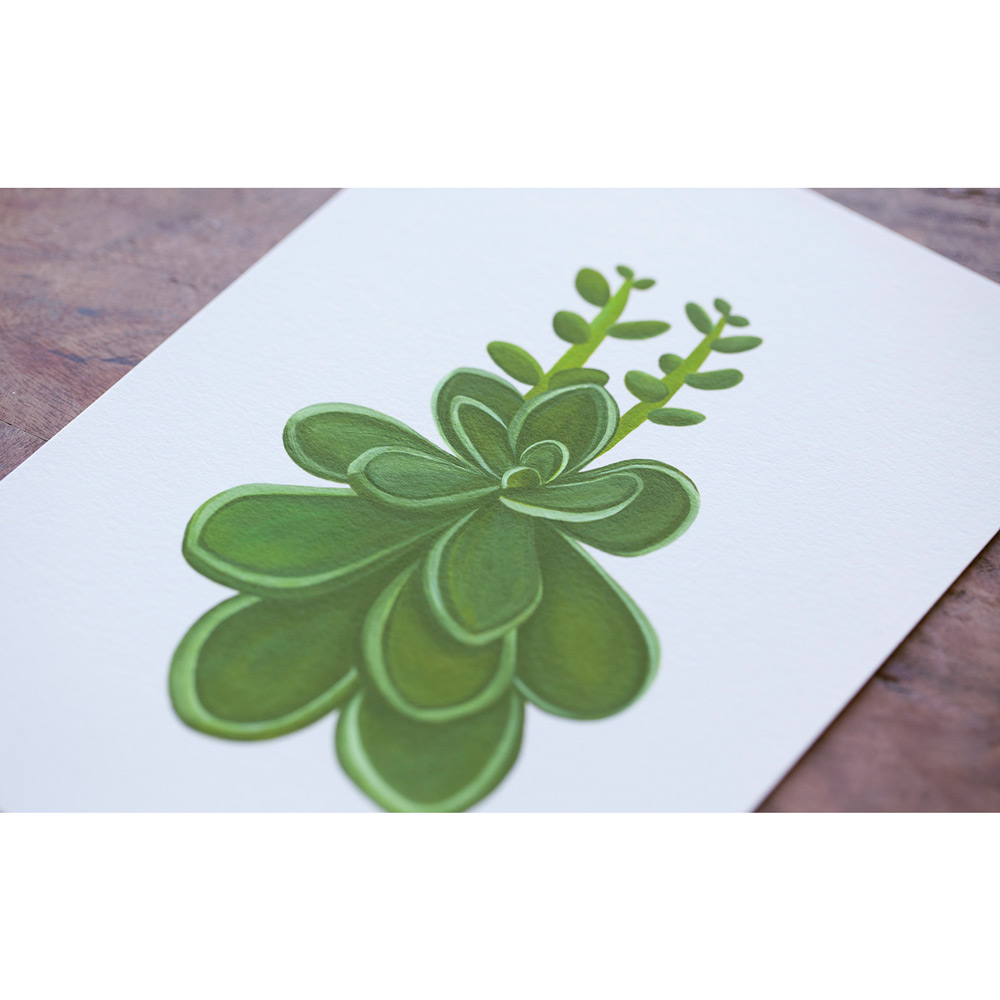 Nice to Have - Giclee Poster - Stonecrop