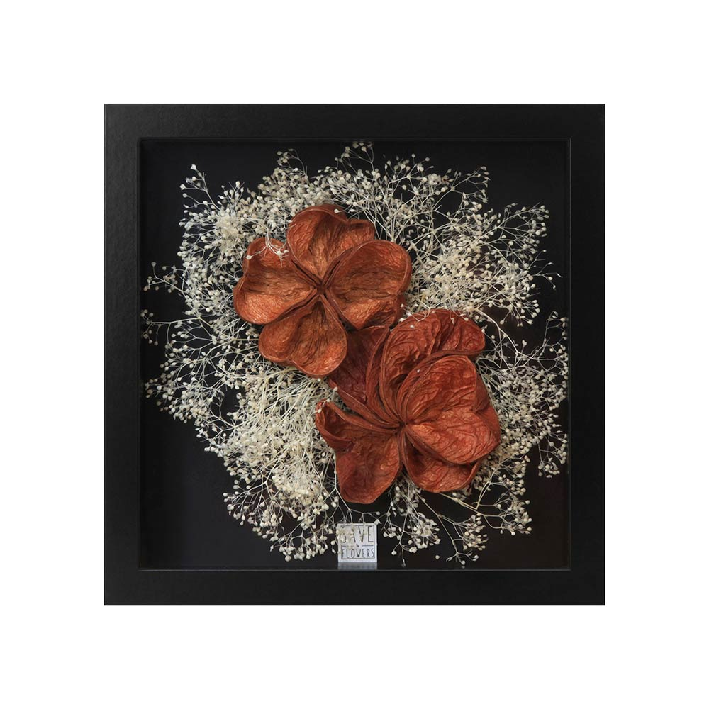 Save The Flowers - Exotic Shells 2 Frame