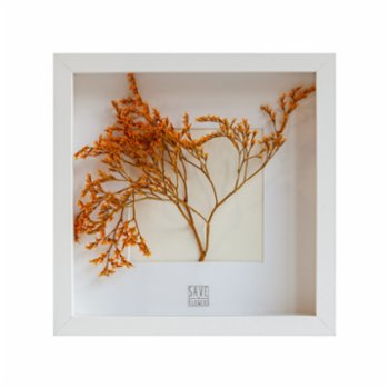Save The Flowers - Square 25 Frame