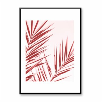 Normmade - Pink Palm Poster