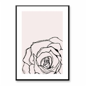 Normmade - Pink Rose II Print