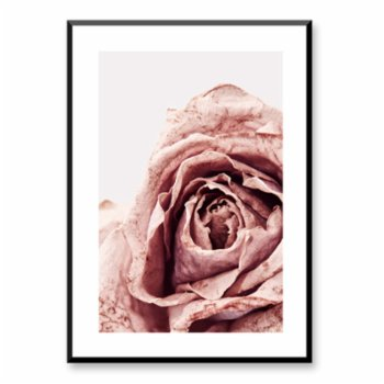 Normmade - Rose Print
