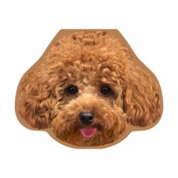 Cheerlabs - Greeting Card with Sound Recording - Alf the Toypoodle