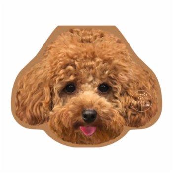 Cheerlabs - Happy Birthday Greeting Card With Music - Alf The Toypoodle