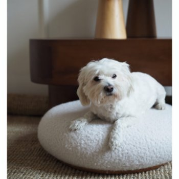 Tuca's Home - Teddy Pet Pouf