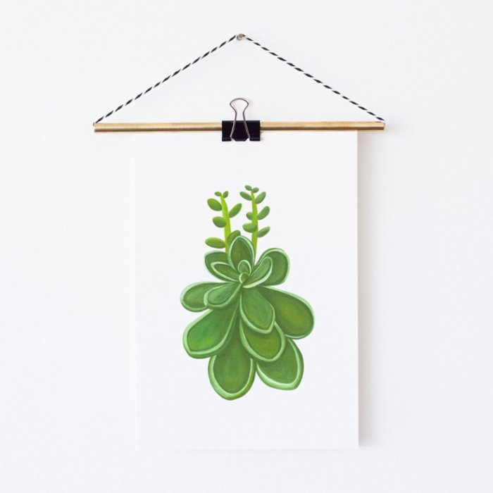 Nice to Have Giclee Print - Stonecrop