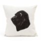 Nice to Have Mandrill Baboon Pillow
