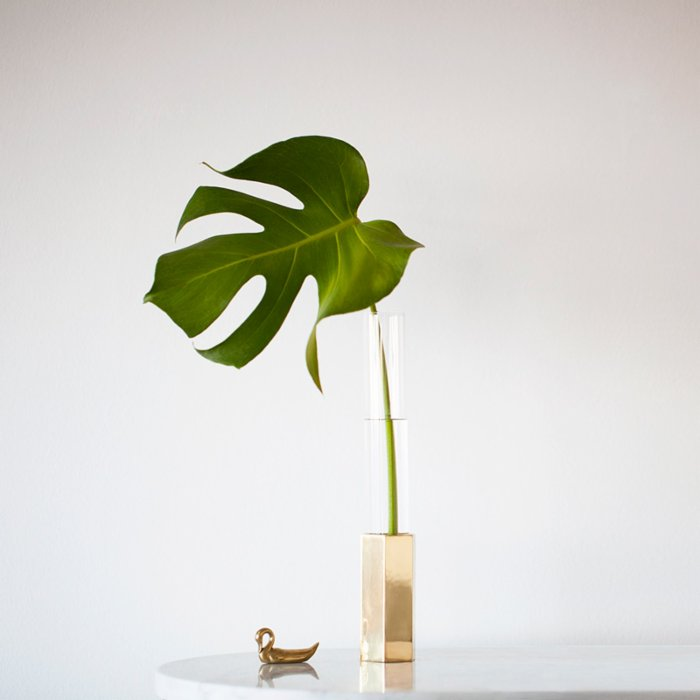 Nice to Have Glass House Vase