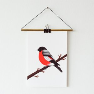 Nice to Have  Giclee Print: Bullfinch