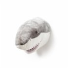 Wild & Soft Jack Shark Wall Decor