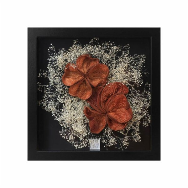 Save The Flowers Exotic Shells 2 Frame