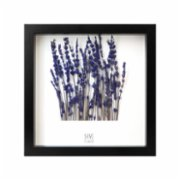 Save The Flowers  Lavander Garden Frame