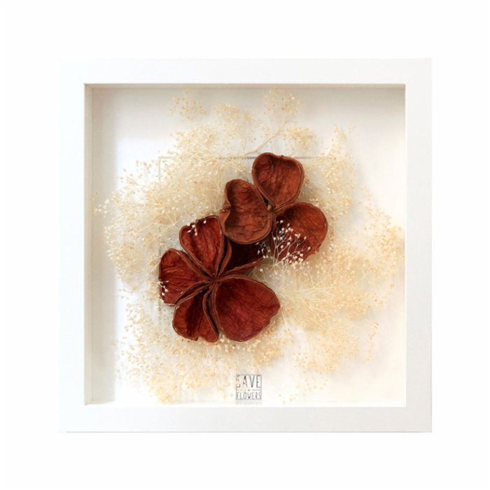 Save The Flowers Exotic Shells Frame