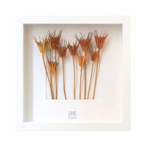 Save The Flowers  Pumpkin Frame