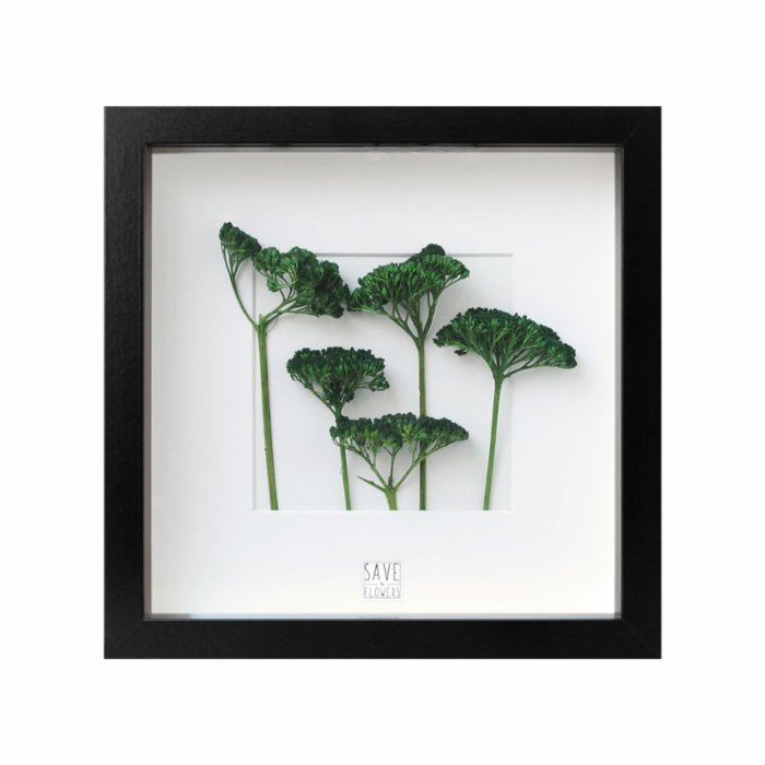 Save The Flowers Miniature Forest I Frame