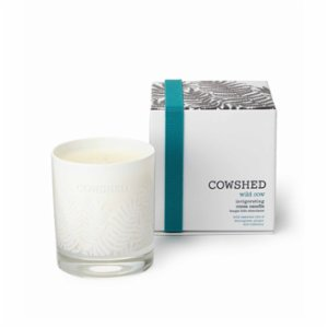 Cowshed  Wild Cow Room Candle
