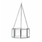 Warm Design	 Honeycomb Glass Hanging Terrarium I