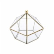 Warm Design	  Edge Diamond Shape Terrarium