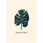 Action Zebra	 Green-Monstera Art Print