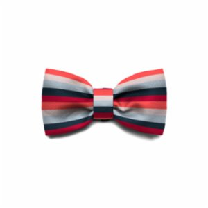 Zee.Dog	  Oregon Bow-Tie