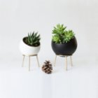 Kitbox Design Globe Planter