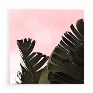 Action Zebra	  Banana Leaf Canvas