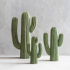 Warm Design	 Resin Cactus
