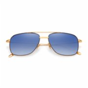 Mooshu  Taco Gold/Blue Polorize Unisex Sunglasses
