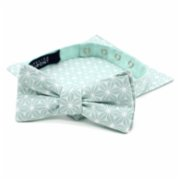 Atelier Dupont  Fuji Mint Slim Bow Tie&Pocket Square