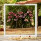 Save The Flowers Glass N07 Frame