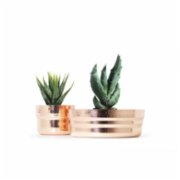 Coho Objet	  Artisan Décor Copper Planter Set of 2
