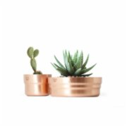 Coho Objet	  Matte Décor Copper Planter Set of 2
