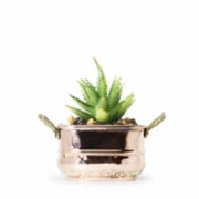 Coho Objet	  Artisan Square Copper Planter