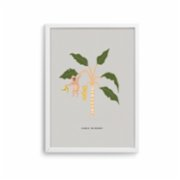 Pop by Gaea  La Festa Charlie The Monkey Print