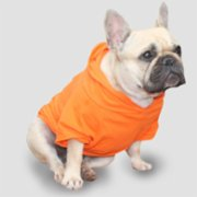 Wuufbox  Orange Dog T-shirt