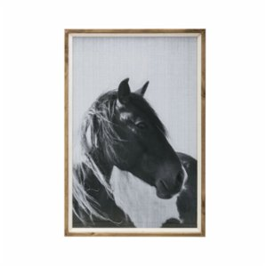Warm Design	  Horse Framed Wall Art