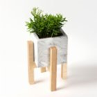 Womodesign Concrete Flowerpot With Wooden Base
