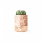 Coho Objet	 Fossile Flat Rose Marble Cactus Pot with Copper Base