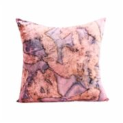 Tien Officiel  Handcrafted Natural Dye Silk Cushion XX