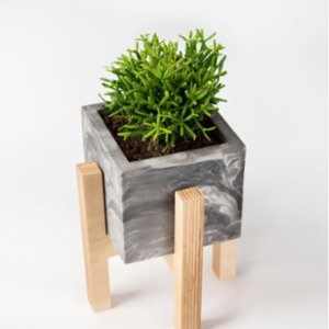 Womodesign  Concrete Flowerpot with Wooden Base - I