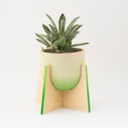 Womodesign  Pineapple - Concrete Flowerpot with Wooden Base
