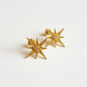 Wish-NU Design&Jewellery  Star Earring
