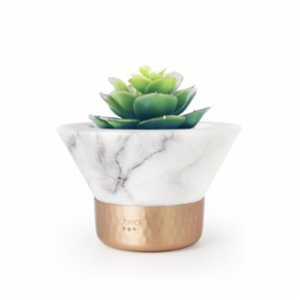 Coho Objet	  Magma Inn Marble Succulent Pot with Copper Base