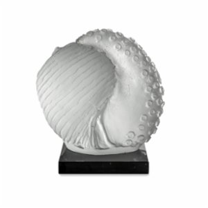 Saken Cam & Tasarım  Shell Glass Sculpture