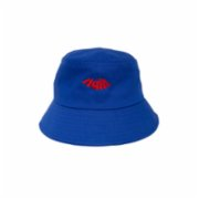Hail!  Hail! Logo Bucket Hat