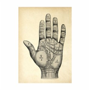 Sauca Collection  Mystical Hand Sepia Printing