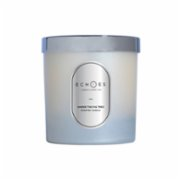 Echoes Lab  Under the Fig Tree Scented Dual Wick All Natural Candle