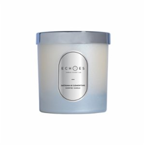 Echoes Lab  Satsuma & Clementine Scented WoodWick All Natural Candle
