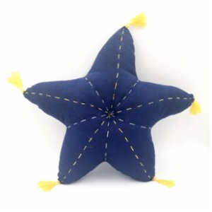 2 Stories  Starfish Pillow